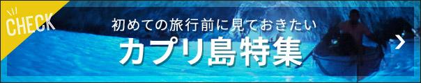カプリ島情報