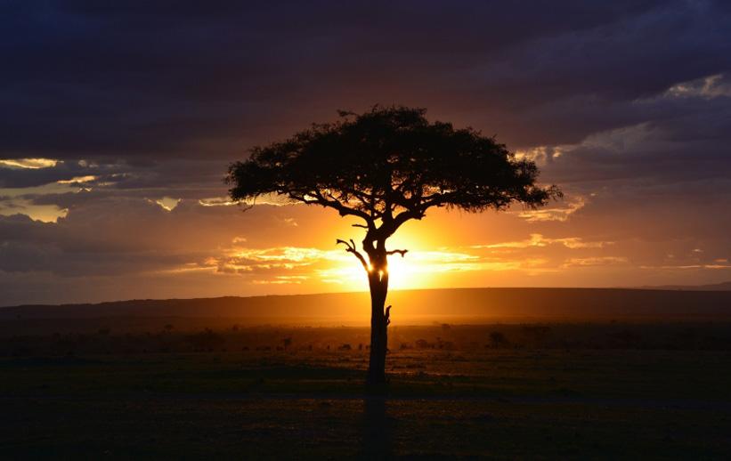 ケニア一人旅(ひとり旅) 海外旅行のSTW