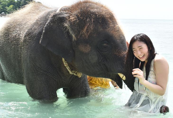 小象と戯れる